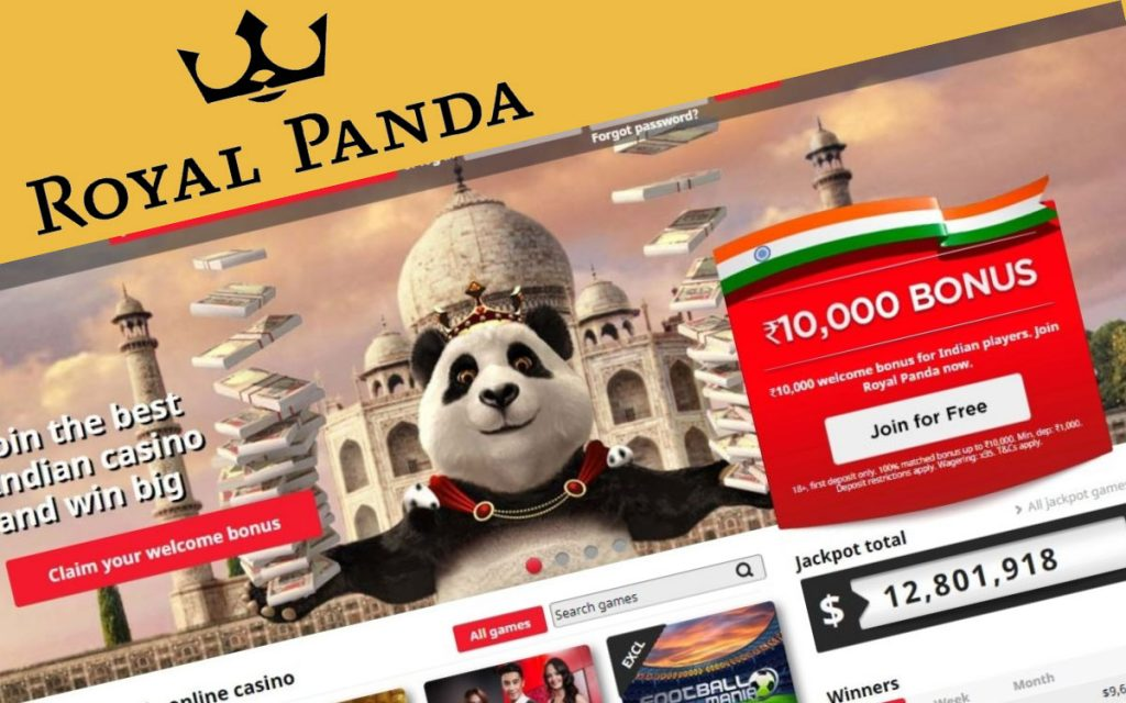 Royal Panda betting india site